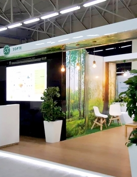 stand copte